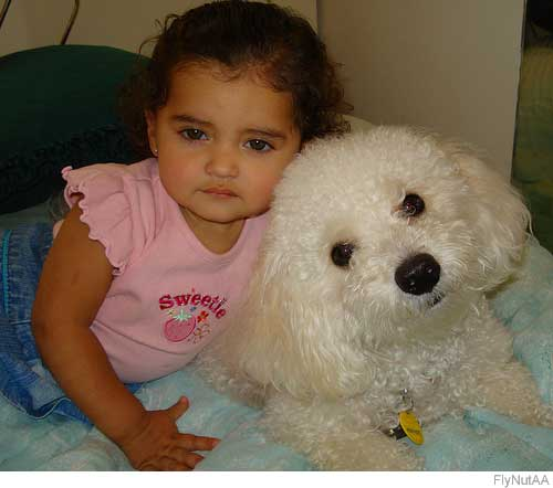 Picture of bichon frise and girl.jpg